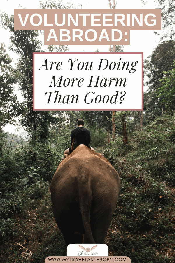 volunteering abroad more harm than good animal tourism