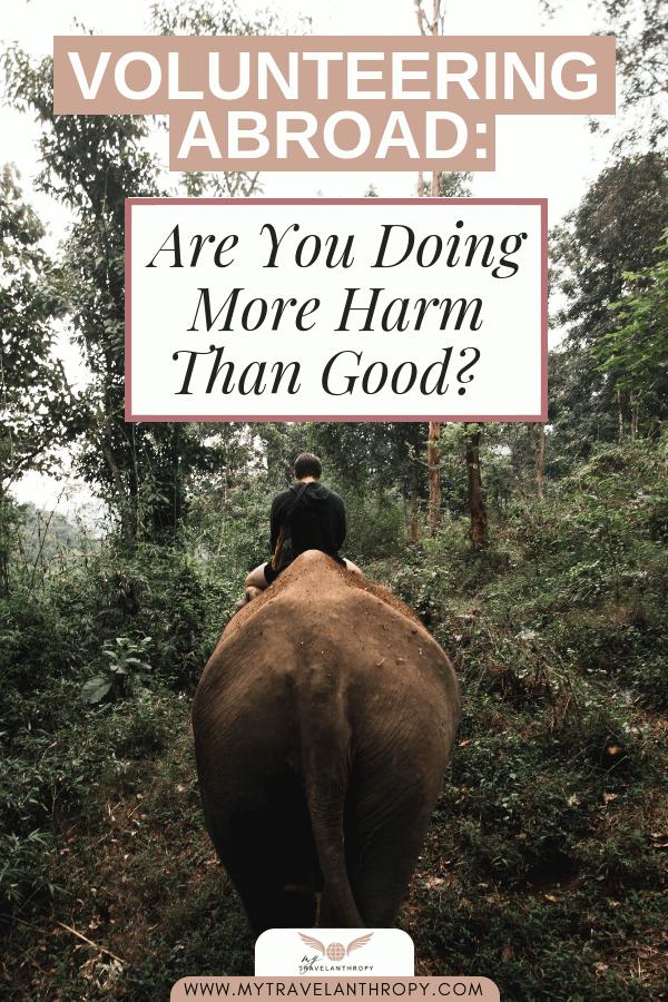 volunteering abroad more harm than good animal tourism